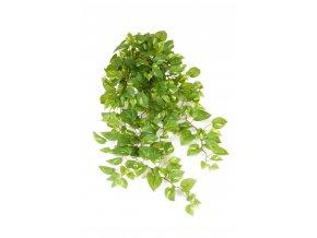 umela-rostlina-gullranka-previsla-v-kvetinaci