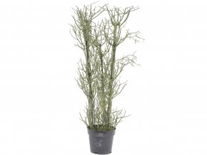 umela-dekorace-sukulent-euphorbia-v-kvetinaci-106cm