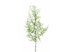 umela-dekorace-asparagus-50cm