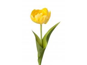 umela-kvetina-tulipan-zluty-bohaty