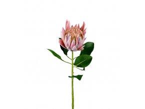 umela-kvetina-protea-ruzova-velkokveta-70cm