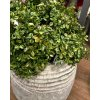 Umělá květina - Brusnice brusinka 20 cm