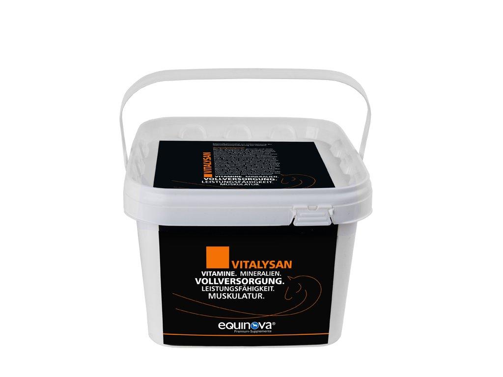 Vitalysan prášek 3 kg, kbelík  prémiový doplněk s vitaminy a minerálními látkami