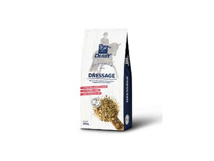 dressage 001
