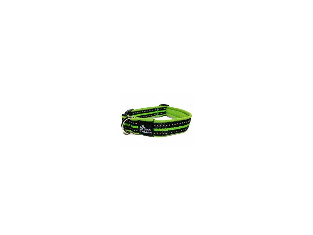 Obojek DINOFASHION reflexní zelený 50/3cm