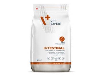 VetExpert VD 4T Intestinal Dog