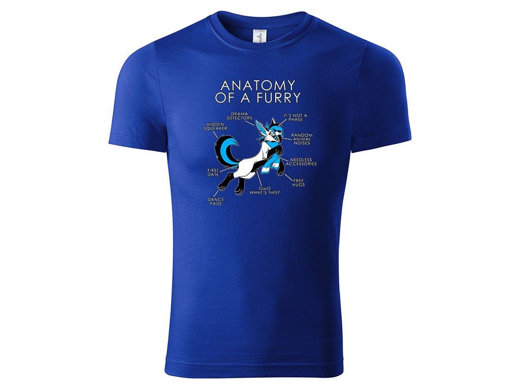 Tričko Anatomy of Furry modré