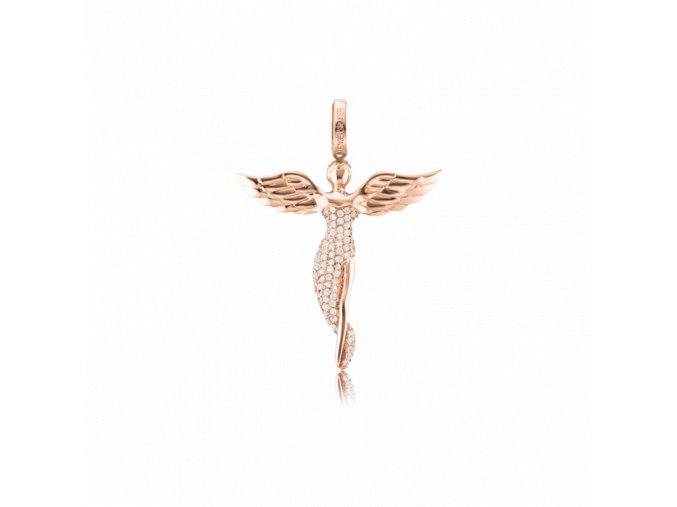 ERP ANGEL SR