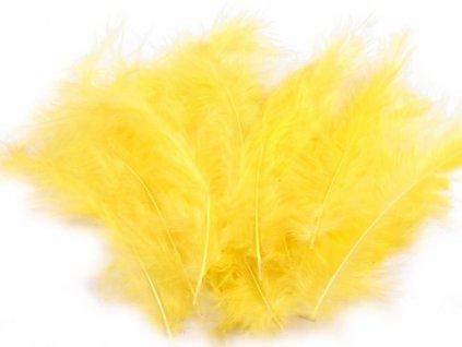Pštrosie perie 12-17cm (cca 20 ks/bal)