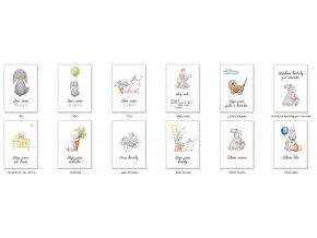 Milníkové kartičky Zajíček