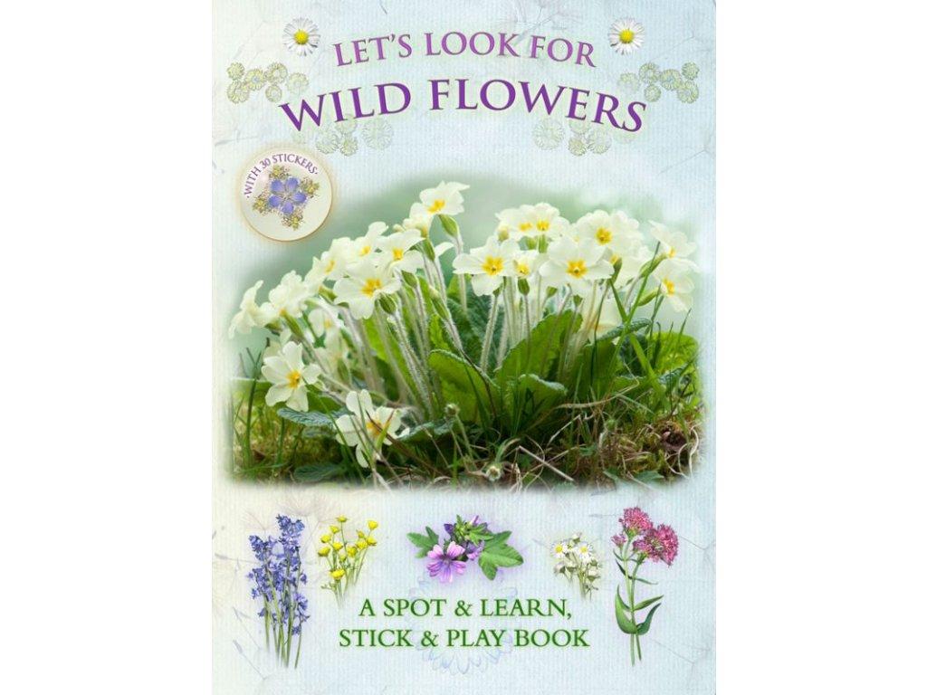 LLF Wild Flowers 580x800