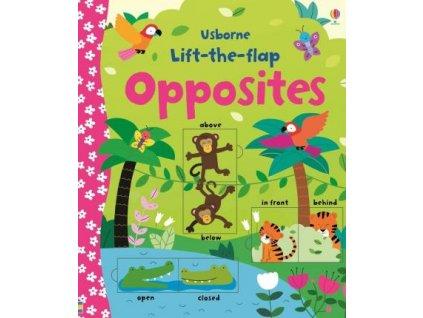 Lift-the-flap: Opposites