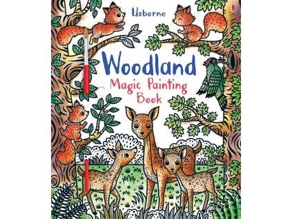 9781474970815 woodland magic painting