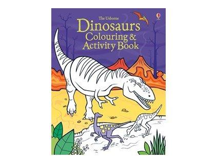 Dinosaur Colouring Book