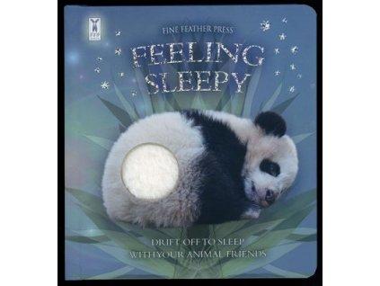 feeling sleepy cover 370x400