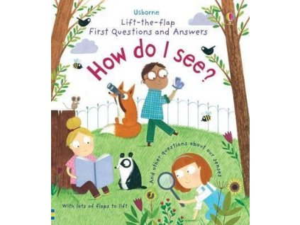Lift-the-flap First Questions and Answers: How do I see?