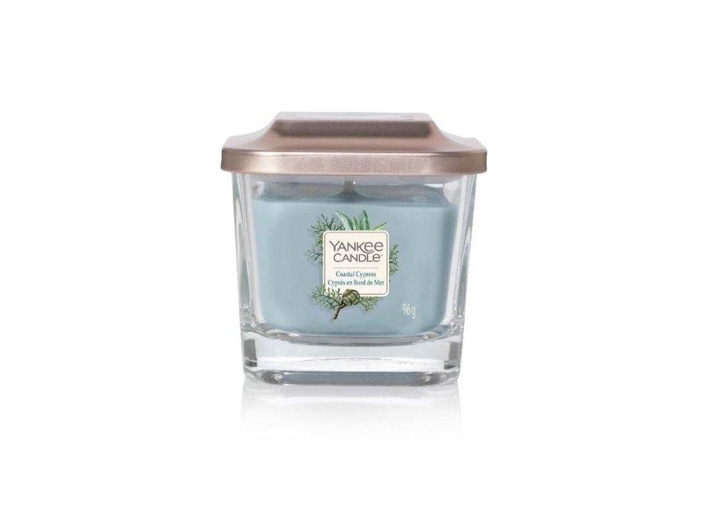 yankee candle coastal cypress 96g