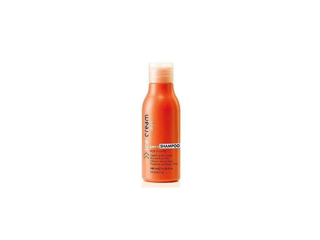 Inebrya Dry-T shampoo 100ml šampon pro suché a poškozené vlasy