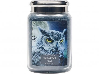 28289 1 village candle svicka wizards owl