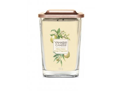 yankee candle citrus grove 552