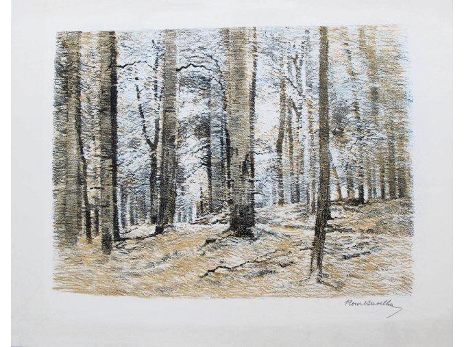 38 771 jaro v lese