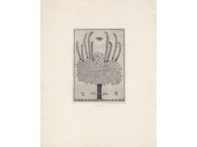 41 111 strom symbolu
