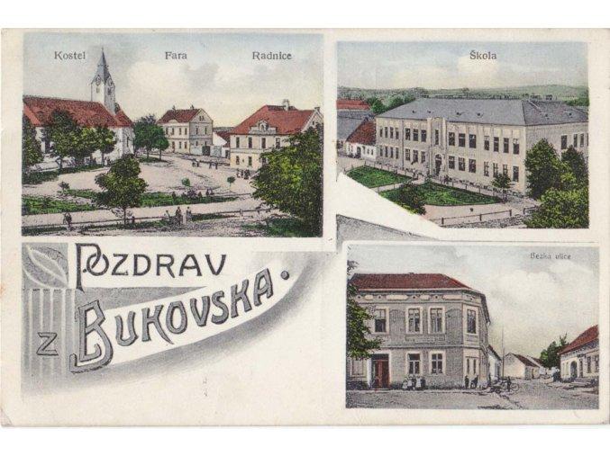 45 426 bukovska (1)