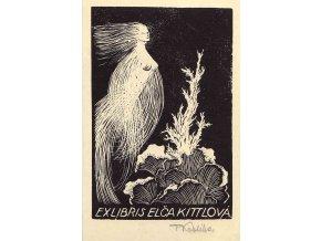 Ex libris Elča Kittlová