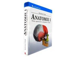 37 823 anatomie