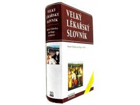 40 190 velky lekarsky slovnik