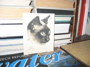 JIŘINCOVÁ LUDMILA Hlava siamské kočky Mišky