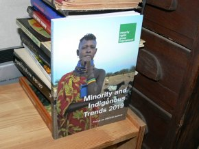 Minority and Indigenous Trends 2019 (anglicky)