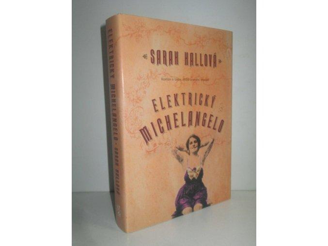 Elektrický Michelangelo : román o lásce, ztrátě a umění tetování