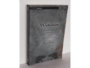 Wetemaa - kniha osudu jedenácti družiníků krále Gudleifra. Díl 2, Cesty