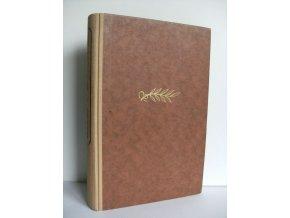 Bronzový rod : Román z jihoamerických Kordilier