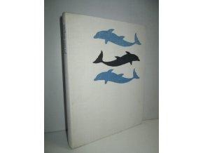 Přítel delfín