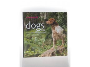 Dogs A-G : hunde chiens cani perros honden