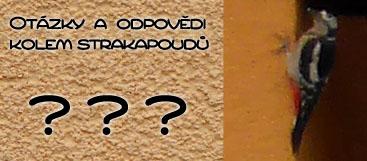 Otázky a odpovědi - Antistrakapoud