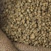robusta Parchumentad MG 3415