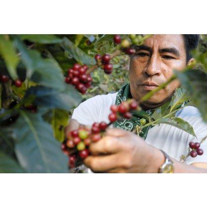 ekvador IMG 3771