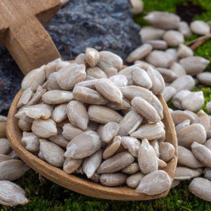 semena slunecnice0510 macro