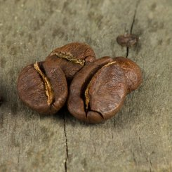 robusta washed IMG 3671