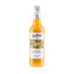 Zazvor new 500ml