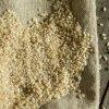 sezamove seminko IMG 0389 1