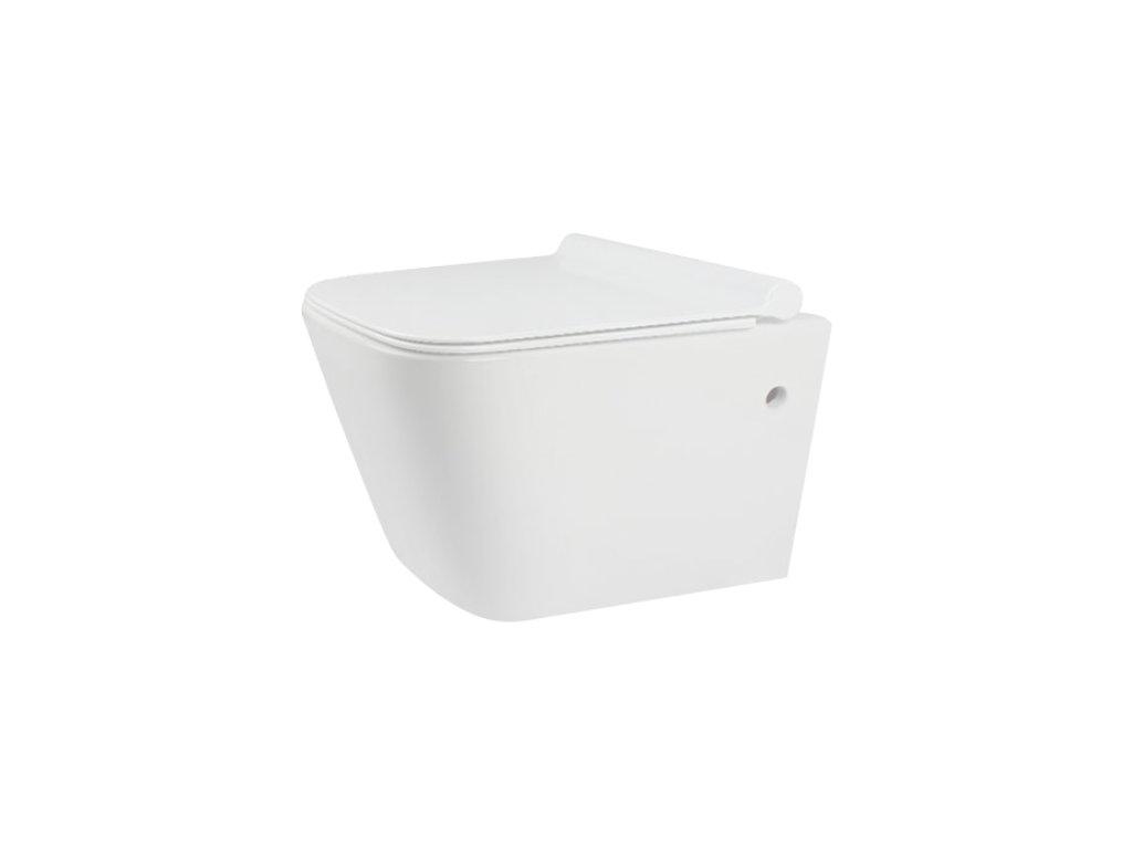 4519 aplomo ryan rimless wc zavesne