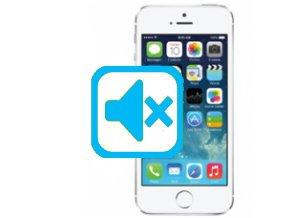 Oprava Tlačítka Vibrace/Zvuk iPhone SE