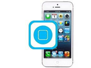 Oprava home tlačítka Iphone 5