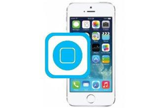 Oprava Home Tlačítka iPhone 5s
