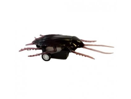 pull back joke cockroach 2036 1 p