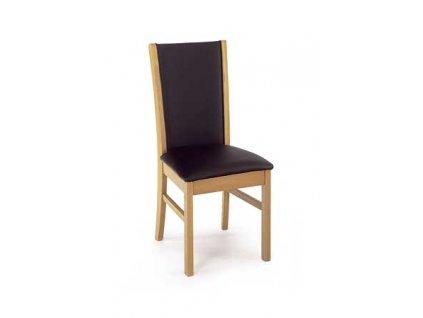 Jídelní židle AQ-O563